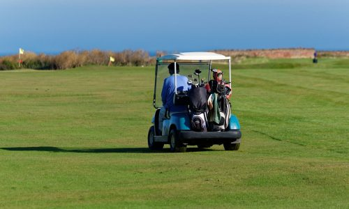 Air Manage Suffolk Kingfishers Golf Buggy